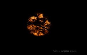 trasslig måne